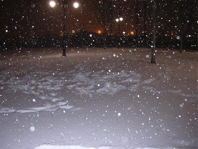 Snow at Night